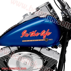 """Kit deposito """"In the Life"""" Harley Davidson"""